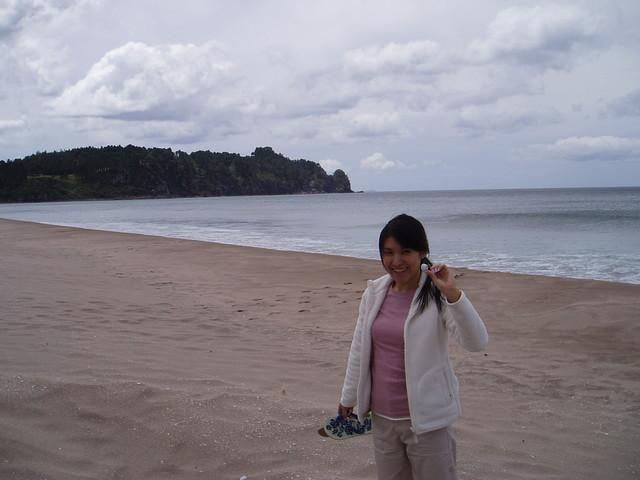 Coast of Coromandel Peninsula