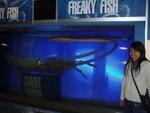 Model of giant squid